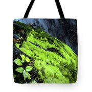 By The Waterfall Tote Bag