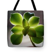 By The Window Pane Tote Bag