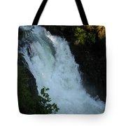 Bz Falls 2 Tote Bag