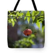 Red Papery Covering Over Its Fruit Tote Bag