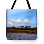 Cabbage Palms And Salt Marsh Grasses Of The Waccasassa Preserve Tote Bag