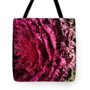 Cabbage Rainbow  Tote Bag