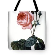 Cabbage Rose Tote Bag