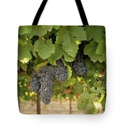 Cabernet Grapes One Tote Bag