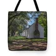 Incredible Story Of Transformation Tote Bag