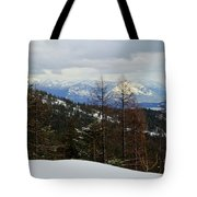 Cabinet View Tote Bag
