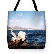 Cabo San Lucas Pelican Tote Bag