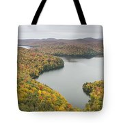 Cabot Vermont Nichols Pond Autumn Tote Bag