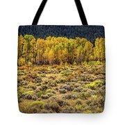 Cache La Poudre River Colors Tote Bag by Jon Burch Photography