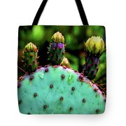 Cacti And Friends Tote Bag