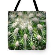 Cactus 1 Tote Bag
