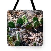 Cactus, Arches National Park Tote Bag