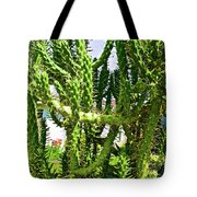 Cactus At Pilgrim Place In Claremont-california  Tote Bag