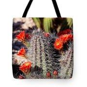 Cactus Bloom 033114f Tote Bag
