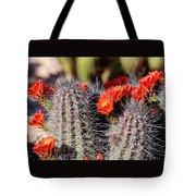 Cactus Bloom 033114g Tote Bag