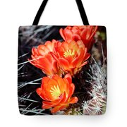 Cactus Bloom 033114j Tote Bag