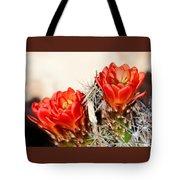 Cactus Bloom 033114m Tote Bag