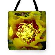 Cactus Blossom Open Tote Bag