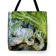 Cactus Curves Tote Bag