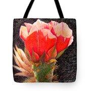 Cactus Cutie Tote Bag
