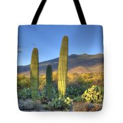 Cactus Desert Landscape Tote Bag