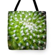 Cactus Feathers Tote Bag