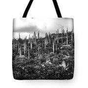 Cactus Field Tote Bag