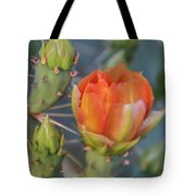 Cactus Flower And Buds Tote Bag