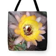 Cactus Flower Lobivia Tote Bag