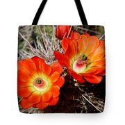 Cactus Flower Twins Tote Bag