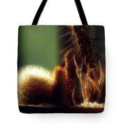 Cactus Light Tote Bag