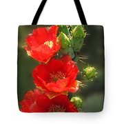 Cactus Red Beauty Tote Bag