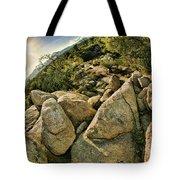 Cactus Rock Tote Bag