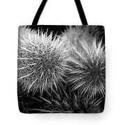 Cactus Spines Tote Bag