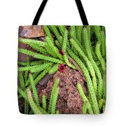 Cactus Splendor Tote Bag