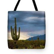 Cactus Sunset Saguaro National Park Arizona Tote Bag
