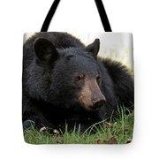 Cades Cove Bear II  Tote Bag