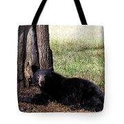 Cades Cove Bear Tote Bag