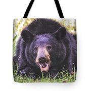 Cades Cove Black Bear Tote Bag