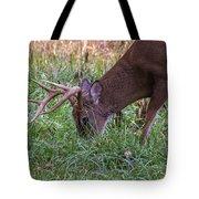 Cades Cove Buck Tote Bag