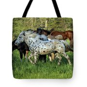 Cades Cove Horses Tote Bag