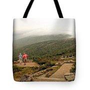 Cadillac Mountain View Tote Bag