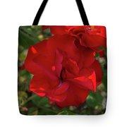 Caecilla's Rose Garden Tote Bag