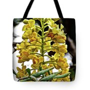 Caesalpinia Cacalaco In Huntington Desert  Gardens In San Marino-california  Tote Bag
