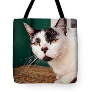 Cafe Cat  Tote Bag