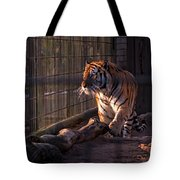 Caged King Of The Jungle Tote Bag