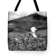 Caherconree Cotton Tote Bag