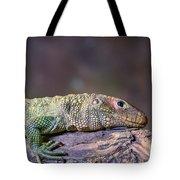 Caiman Lizard Tote Bag