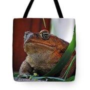 Cain Toad Tote Bag