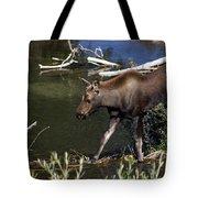 Calf Moose Tote Bag